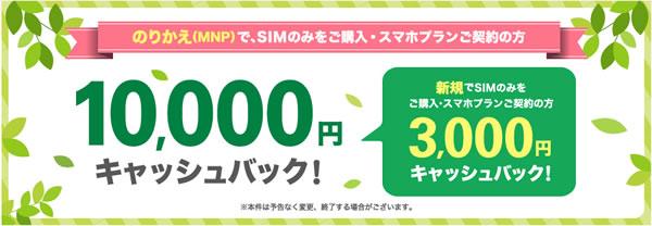 SIMのみ申し込みで最大10,000円キャッシュバック